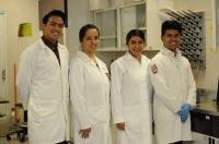 Мексиканские исследователи подтверждают эффективность препарата на основе жука знахаря для лечения ревматоидного артрита