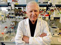 Альтернативные методы лечения рака: о чем не любят говорить онкологи